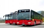 gips autobus4